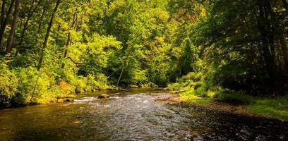 belle scène de ruisseau le long des chutes de poudre à canon dans le comté de baltimore photo