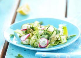 salade de légumes de printemps photo