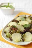 insalata di cetrioli e lattuga rossa