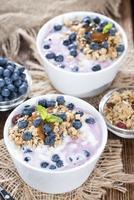 yaourt aux myrtilles photo