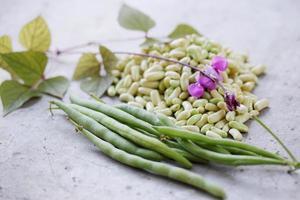 gousses fraîches haricots verts photo