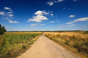 paysage de campagne. champ.