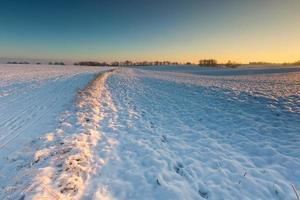 beau paysage de champ d'hiver. photo