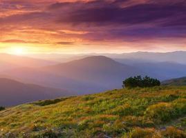 beau paysage d'été dans les montagnes. photo
