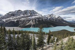 panoramique du lac peyto