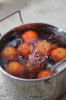 tomates photo