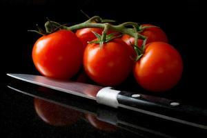 tomates de vigne photo