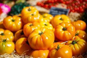 Tomates fraîches biologiques du marché des agriculteurs méditerranéens en prov photo