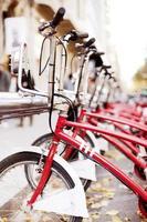 vélos stationnés à louer