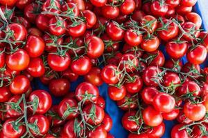 beaucoup de tomates de taille moyenne photo