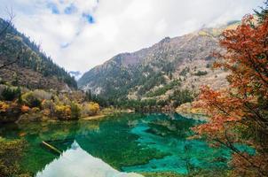 merveilleux automne à jiuzhaigou