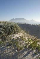 dunes photo