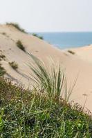 vue sur les dunes photo
