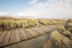 chemin à travers les dunes