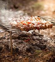 photo de kebab en feu dans la forêt