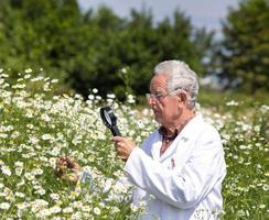 herboriste sur Prairie photo