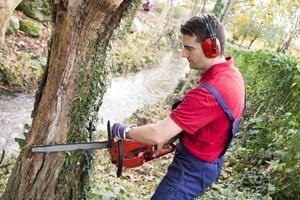 homme avec tronçonneuse dans les bois photo