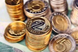 l'argent polonais