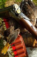 fusil, canard et munitions de chasse