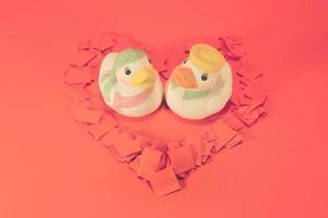 canards en céramique blanche avec concept de couple charmant. photo