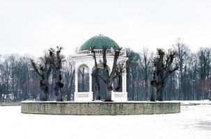 lac des cygnes en hiver photo