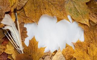 cadre de feuilles d'automne photo