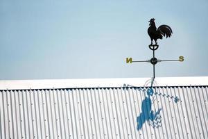 girouette coq photo