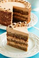 gâteau au café au chocolat. photo