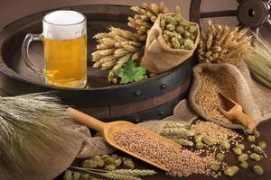 ingrédients de la bière