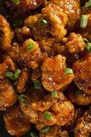 poulet oranage asiatique aux oignons verts