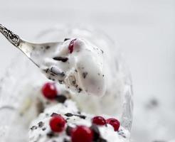 crème glacée stracciatella aux fruits rouges photo