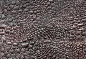 cuir de crocodile photo