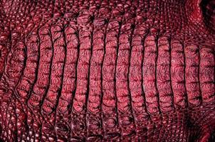 fond de texture de cuir de crocodile