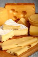 assortiments de fromages. nature morte. photo