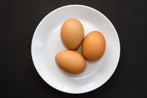 œuf de poule photo