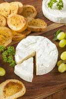 fromage brie blanc fait maison biologique photo