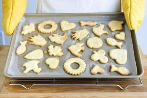 biscuits fraîchement cuits photo