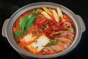 ragoût de style coréen épicé photo