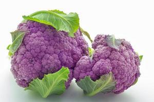 chou-fleur violet photo