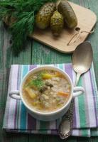 cornichon à soupe. plat de cuisine russe photo