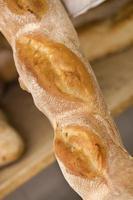 baguette dans la boulangerie photo