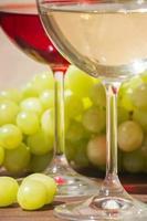 vin et raisin photo