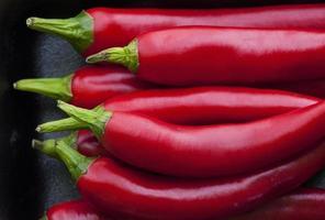 piment rouge photo