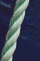 nœud vert photo