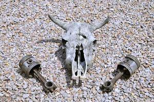 crâne et pistons