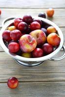 prune et prune cerise dans des gouttes d'eau photo