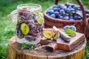 ingrédients pour les prunes en conserve dans le jardin photo