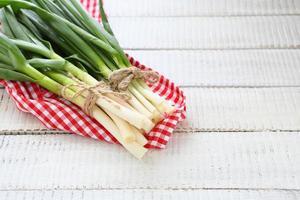 oignons frais et ail photo