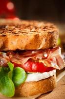 sandwich blt - gros plan photo
