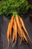 carottes photo